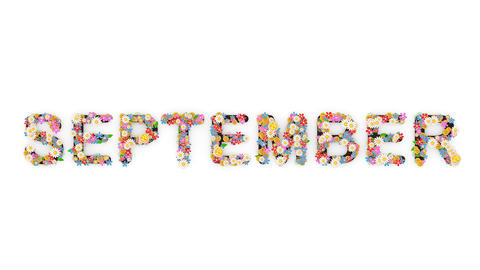 Floral calendar month text animation, September Animation