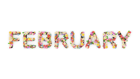 Floral calendar month text animation, February Animation