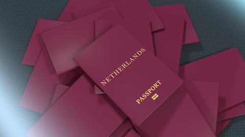 Artist rendering Netherlands travel passport Animation
