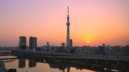 View of Tokyo Sky Tree, Tokyo, Japan Footage