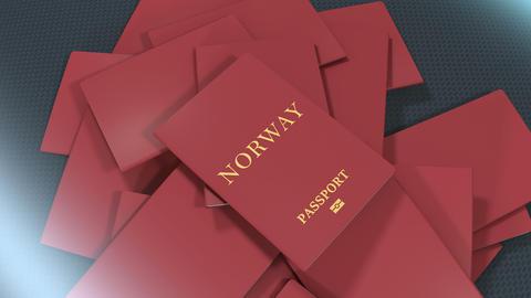 Artist rendering Norway travel passport Animation