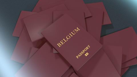 Artist rendering Belgium travel passport Animation