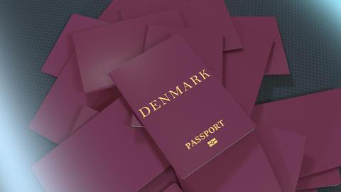 Artist rendering Denmark travel passport Animation