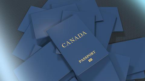 Artist rendering Canada travel passport Animation