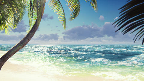 Branches of palm trees and tropical plants in the wind at sunny day. Beautiful summer loop Animation