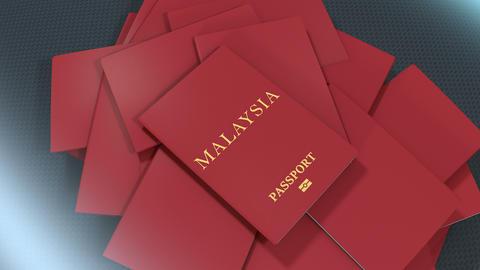 Artist rendering Malaysia travel passport Animation