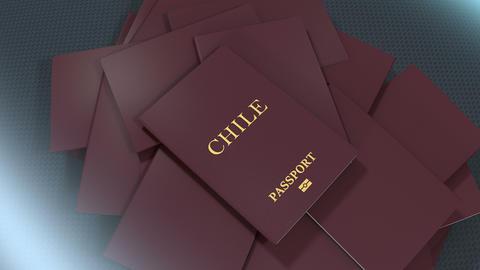 Artist rendering Chile travel passport Animation