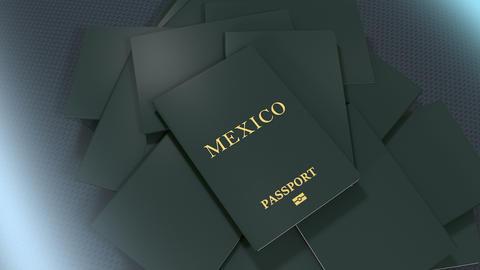 Artist rendering Mexico travel passport Animation