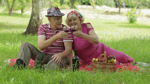 Family weekend picnic in park. Active senior old caucasian couple sit on blanket Live Action