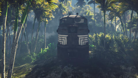 Wrecked train lies in the jungle in the middle of palm trees and tropical vegetation Animation