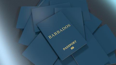 Artist rendering Barbados travel passport Animation