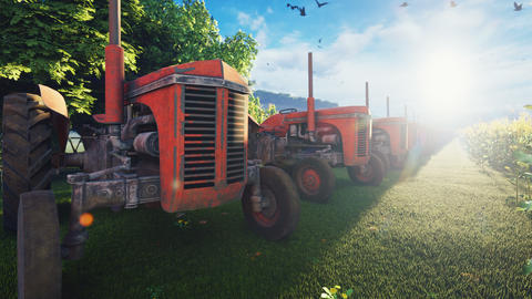 Old tractors stand near a corn field early in the morning. Agriculture and environment Animation