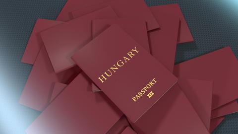 Artist rendering Hungary travel passport Animation
