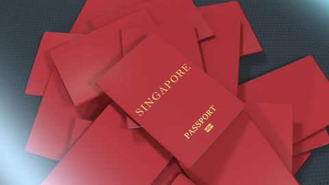 Artist rendering Singapore travel passport Animation