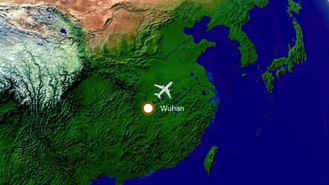 Flight from Wuhan to Los Angeles. Air travel animation Animation