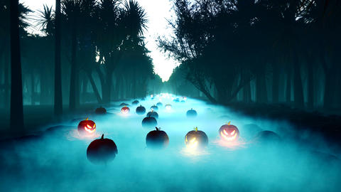 Glowing pumpkins, dark forest, Halloween celebration. Night landscape with a mystical fog, glowing a Animation