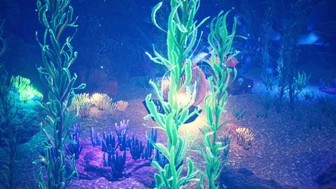 Fabulous Tropical Marine Life. Tropical underwater marine life and tropical beautiful underwater Animation