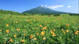 Rishiri Island, Hokkaido, Japan Footage