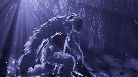 Yeti runs through a misty mystical forest at night. The Bigfoot is walking in a dark scary forest Animation