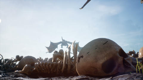 Large dragons fly over the battlefield with human bones lying on it. Looping animation for fabulous Animation