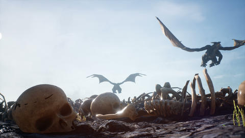 Dragons fly over the battlefield with human bones. Animation for fabulous, fiction or fantasy Animation