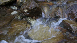 Water stream in the forest Footage