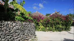 Stone wall and the houses on Taketomi Island, Okinawa Prefecture, Japan Footage
