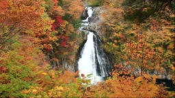 Hottai Fall and autumn leaves at Mount Chokai, Akita Prefecture, Japan Footage