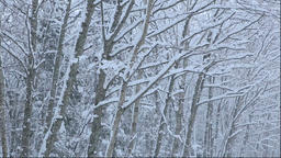 Snow falling in the Kushiro area of Hokkaido Footage