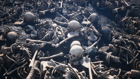 Terrible old skulls and bones on the field of the past battle. The concept of war and the Apocalypse Animation