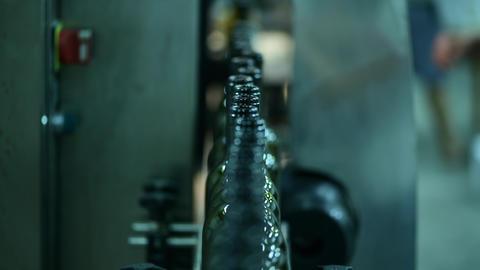conveyor with wine bottles at wine factory white wine production, bottle washing ライブ動画