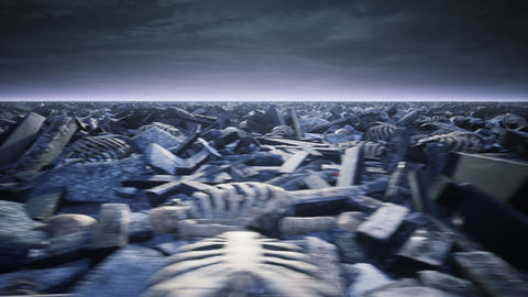 Old skulls and human bones lie on the battlefield after a devastating war or global catastrophe. The Animation