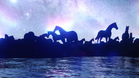 A large herd of horses grazing in the steppe near a pond against the background of stars and CG動画