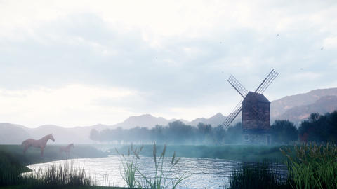 A rural misty morning landscape with an old windmill and horses next to a pond, grasses and plants Animation