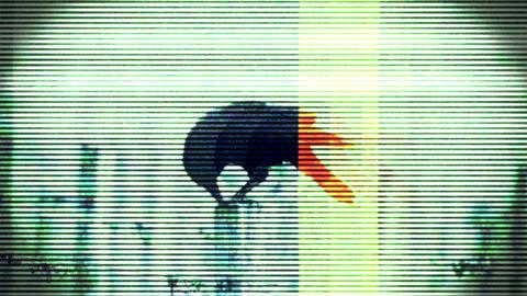 Horror Transition 6 Animation