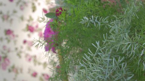 Peonies Wedding Floristics GIF