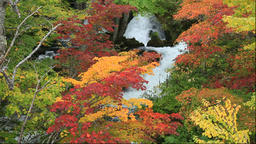 Autumn leaves and Lake Akan in Hokkaido Footage