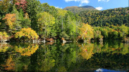 Autumn leaves and Lake Akan in Hokkaido Footage