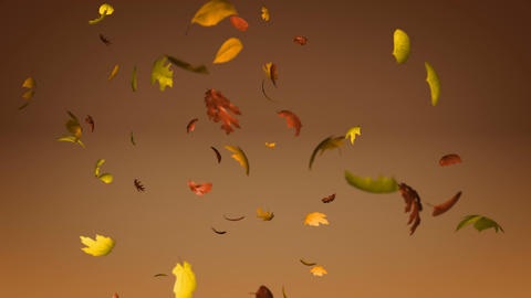 Falling leaves loopable Animation