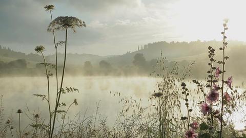 Fog rising from a lake at sunrise ビデオ