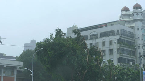 Establishing shot of apartment building and trees in typhoon Footage