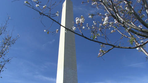 The Washington Monument in Washington, DC Footage