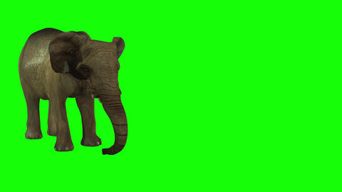 816 4K ANIMALS 3D computer generated baby ELEPHANT eating and troump Camera 2 view Animation