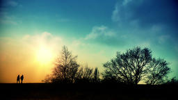 Couple walking and tree silhouettes at sunset Footage
