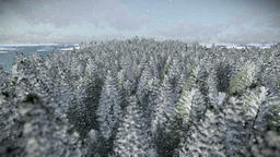 Cruising over forest hills and sea, beautiful morning, snowing Animation