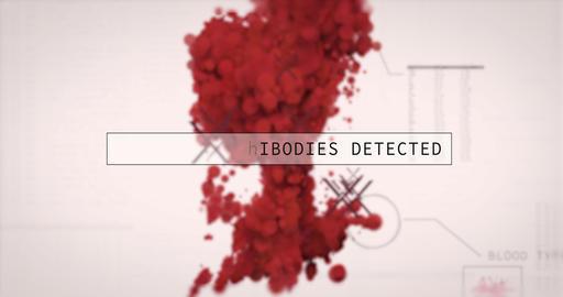 Corona Virus covid-19 is detected in digital blood test. Medical analysis hud Videos animados