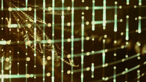 Grid Light Streaks 06 Videos animados