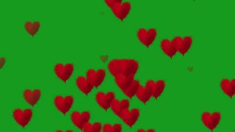 Falling hearts motion graphics with green screen background CG動画