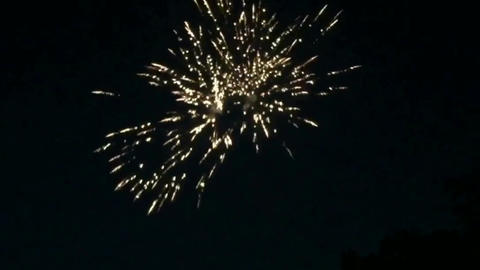 Fireworks motion graphics with night background Videos animados