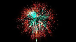 Fireworks, red yellow and blue, against black Animation
